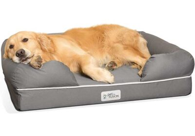 Is Memory Foam Good For Dogs